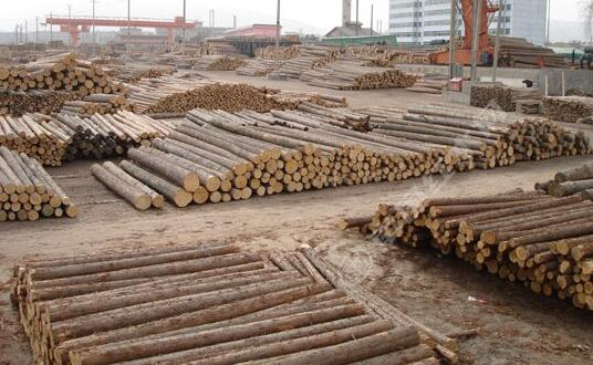 国数源-原木
