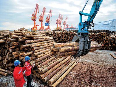 国数源-木材码头