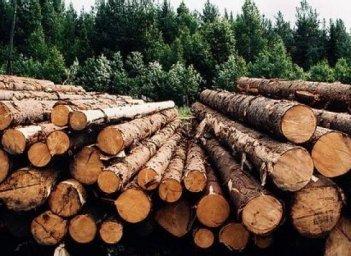 南美原木市场零星交易为主-实木楼梯