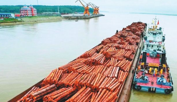 加纳木材出口.png